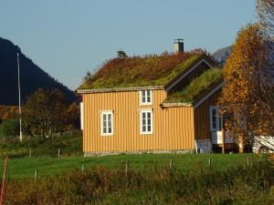 Feriehus, overnatting,Andøy, hvalsafari, Nord Norge, Vesterålen, Lofoten