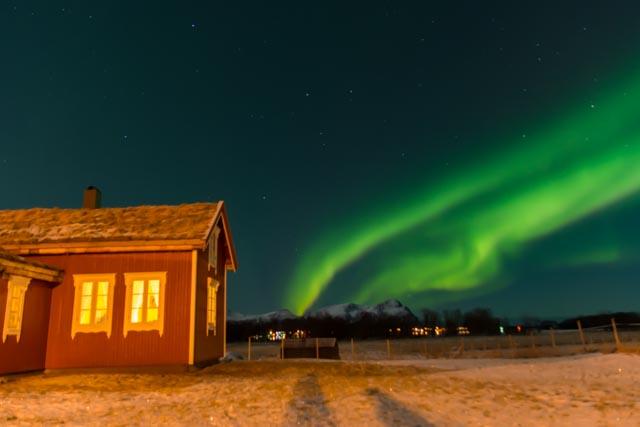 Feriehus, overnatting, Andøy, hvalsafari, Nord Norge, Vesterålen, Lofoten