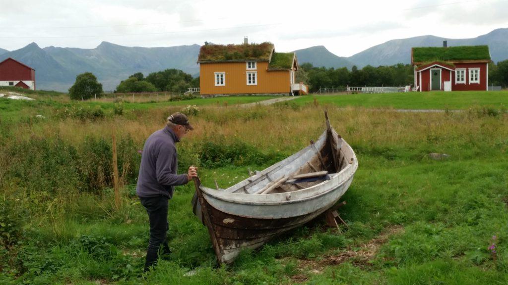 hvalsafari i nord norge